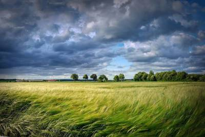 В субботу на территории Смоленской области возможны грозы