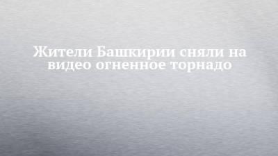Жители Башкирии сняли на видео огненное торнадо