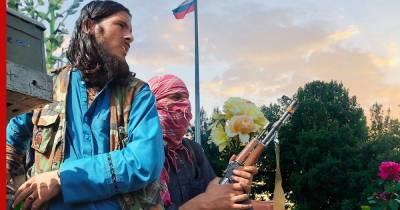 Посол России в Кабуле положительно оценил первые действия талибов у власти
