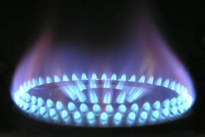 Эрдоган попросил Путина увеличить поставки газа по Турецкому потоку