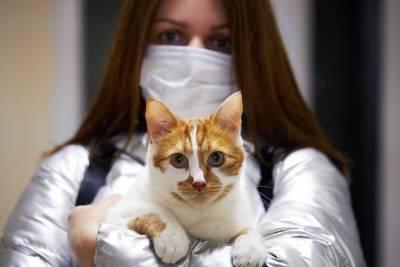 Несколько стран заинтересовались российской вакциной для животных от коронавируса