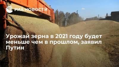 Президент России Путин: урожай зерновых в 2021 году будет меньше чем в прошлом