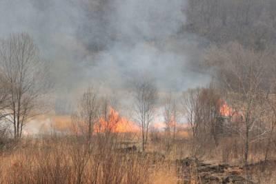 В Хабаровске ожидается высокий уровень пожарной опасности