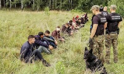 Польша вслед за Литвой построит «забор против мигрантов» на границе с Белоруссией