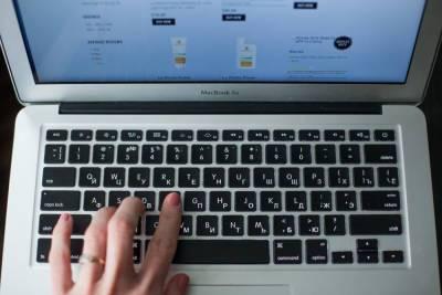 Социально значимые услуги в Петербурге переведут в онлайн к 2024 году
