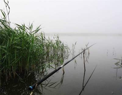 В Азербайджане с сентября снимаются ограничения на рыбную ловлю