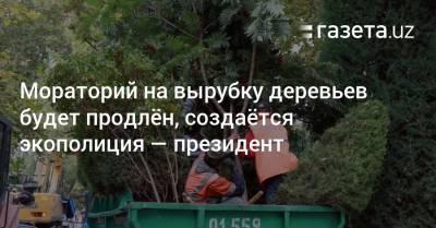 Мораторий на вырубку деревьев будет продлён, создаётся экополиция — президент