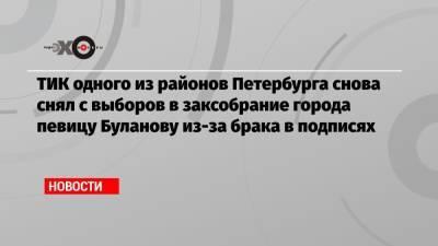 ТИК одного из районов Петербурга снова снял с выборов в заксобрание города певицу Буланову из-за брака в подписях