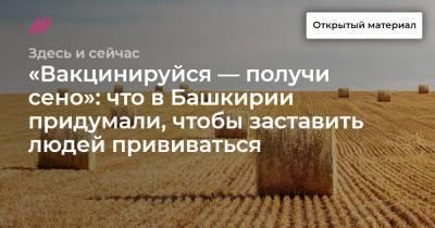 «Вакцинируйся — получи сено»: что в Башкирии придумали, чтобы заставить людей прививаться