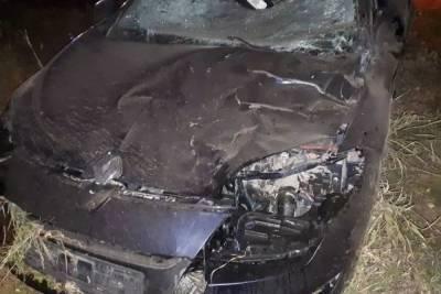 Житель Башкирии за рулем легковушки сбил на дороге лося