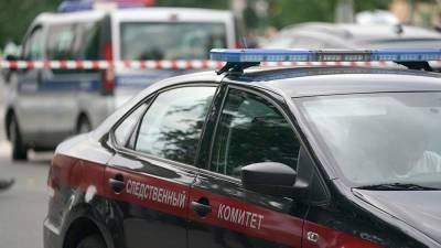 СК проверит жителя Тюмени на причастность к убийству 8-летней девочки