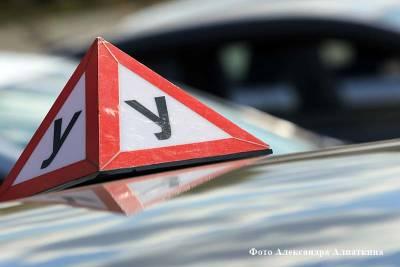 В Курганской области ГИБДД проверит автошколы из-за роста числа нарушений