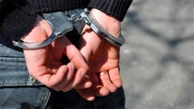 Ударивший двух полицейских смолянин предстанет перед судом