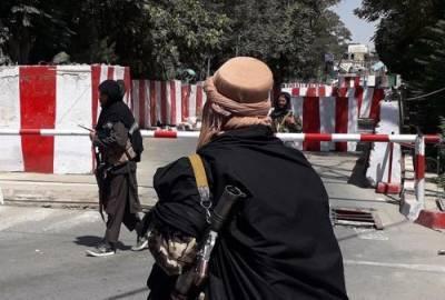 Посол РФ в Афганистане Жирнов сообщил, что талибы открыты к российскому участию в экономике страны