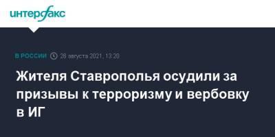 Жителя Ставрополья осудили за призывы к терроризму и вербовку в ИГ