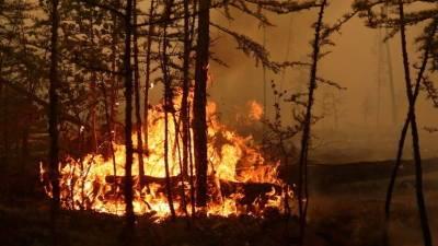 В Башкирии за сутки ликвидировали семь очагов природных пожаров