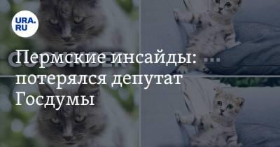 Пермские инсайды: потерялся депутат Госдумы
