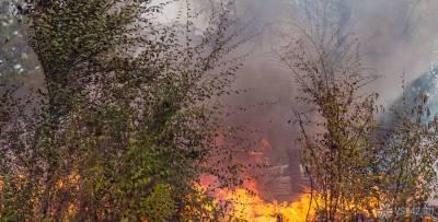 Истребитель СУ-24 разбился в Пермском крае