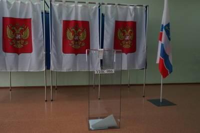 Кандидат от партии власти Алена Кукушкина снялась с выборов в ЗакС Петербурга
