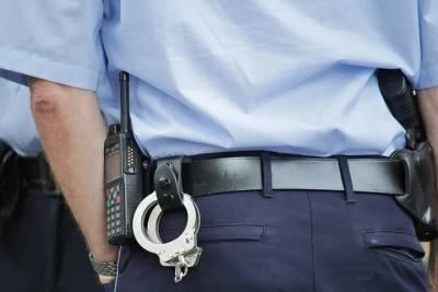 До 5 лет колонии грозит жителю Пыталово, ударившему полицейского