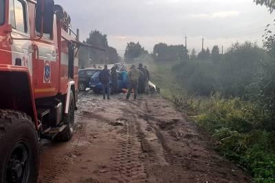 В ДТП под Смоленском пострадали 5 человек. Среди них есть маленький ребенок