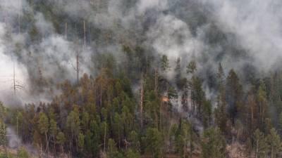 Минобороны направило дополнительные силы для борьбы с лесными пожарами в Якутии