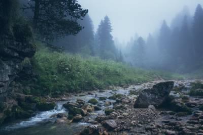 4 августа в Смоленской области будет тепло и дождливо
