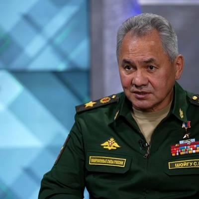 Шойгу: Россия столкнулась в Сирии с высокопрофессиональными террористами