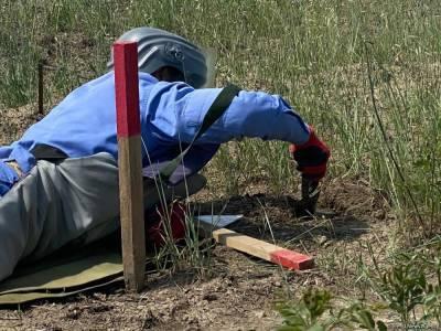 От мин и неразорвавшихся боеприпасов очищено еще 179 га освобожденных территорий Азербайджана