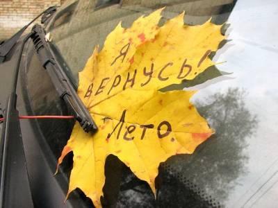 Какой будет погода в Смоленской области в последний день лета