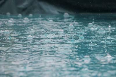 Последний день лета будет теплым и дождливым