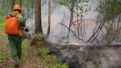 За сутки в Якутии ликвидировали природные пожары на площади более 60 тыс. га