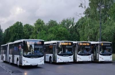 Прорыв трубы в Петербурге изменил маршруты автобусов