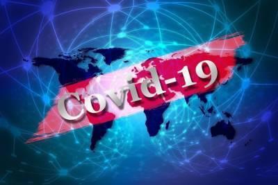 В Карелии по данным на 4 августа 167 инфицированных коронавирусом