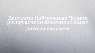 Депутаты Набережных Челнов распределили дополнительные доходы бюджета