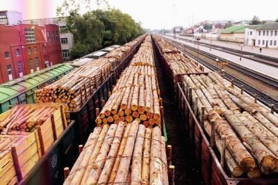 Почти 200 тысяч кубов леса вывезено из Удмуртии с начала года