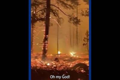 Леонардо Ди Каприо посвятил пост лесным пожарам в Якутии
