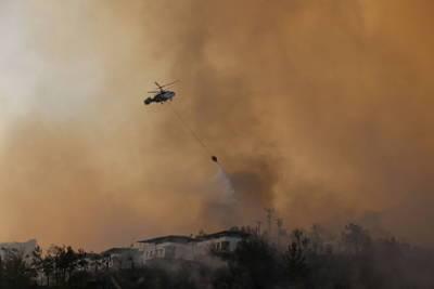 Эрдоган сравнил лесные пожары с терроризмом и пандемией коронавируса