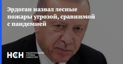 Эрдоган назвал лесные пожары угрозой, сравнимой с пандемией