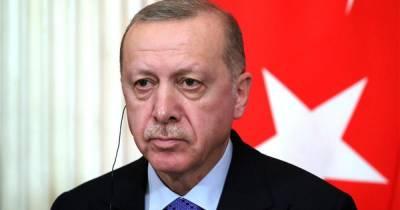 Эрдоган счел лесные пожары международной угрозой