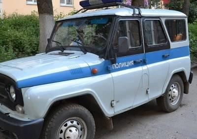 Рязанские полицейские задержали вандалов, разгромивших парк в Новомичуринске