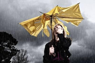 В пятницу в Смоленской области вновь прогнозируют сильный дождь и ветер