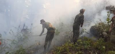 Лесной пожар в Ярдымлинском районе потушен