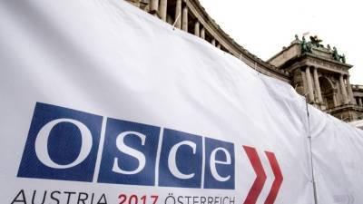 США поддерживают отказ ОБСЕ от наблюдения за парламентскими выборами в России