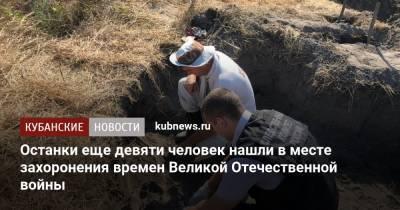 Останки еще девяти человек нашли в месте захоронения времен Великой Отечественной войны в Темрюкском районе
