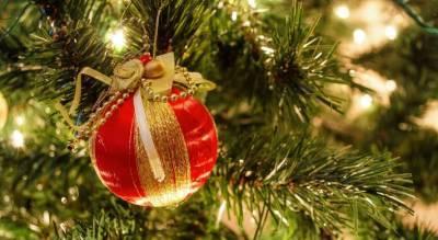 В Новосибирске экс-полицейского будут судить за взятку новогодней ёлкой