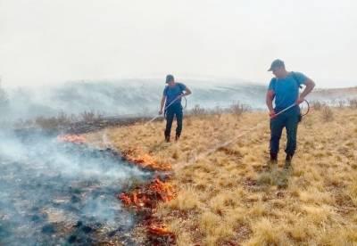 Радий Хабиров рассказал, когда в Башкирии улучшится ситуация с лесными пожарами