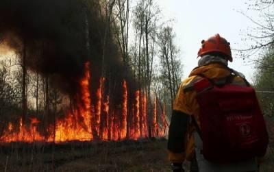 Более 30 домов сгорело при пожаре в селе Бяс-Кюель в Якутии
