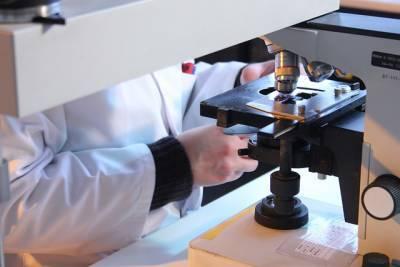 Петербургские ученые назвали группу людей с наибольшим числом антител к коронавирусу