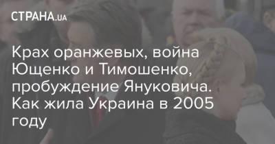 Крах оранжевых, война Ющенко и Тимошенко, пробуждение Януковича. Как жила Украина в 2005 году